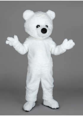 Teddy Mascot costume