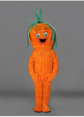 Smiley Carrot Mascot Costume