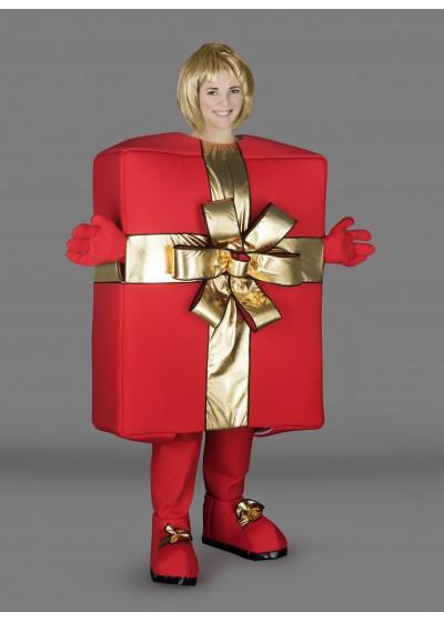 Gift Box Mascot Costume